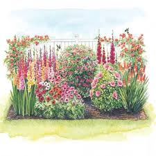 Small Picture Hummingbird Flower Garden All the Resources to Succeed
