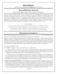 Business Analyst Resume Summary Berathen Com