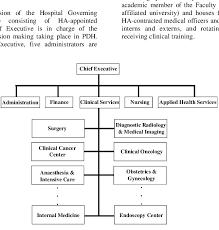 Organizational Chart Of Princess Diana Hospital Download