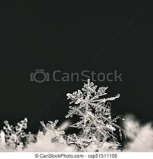 real snow background. Brilliant Background Snowflake Macro Photo Of Real Snow Crystal Beautiful Winter Background  Seasonal Nature And The Weather In Winter On Real Snow Background N