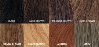 Hair Color Chart Brown Swatches Colour Shades Brunette Loreal