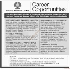 petroleum limited jobs dawn jobs ads   petroleum limited jobs dawn jobs ads 06