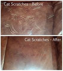 CatScratches before after resize=618 697&ssl=1