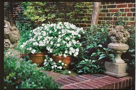 See why you should choose large flower pots and urns to bump up your landscape's style. 125 Container Gardening Ideas Southern Living