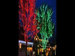 lighting outdoor trees. Christmas Lights For Outdoor Trees Lighting O