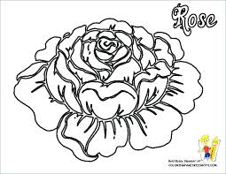 Flower Coloring Pages To Print Flower Page Printable Coloring Sheets
