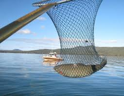 Oregons Diamond Lake Produces Large Trout Few Frowns