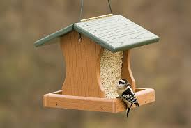 Image result for bird houses