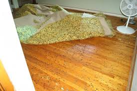 rug pads safe for hardwood floors home design within area rug pad for hardwood floors