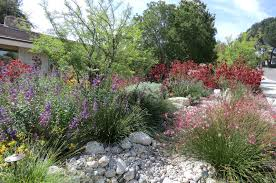Small Picture California native plant gardening and landscaping have tremendous