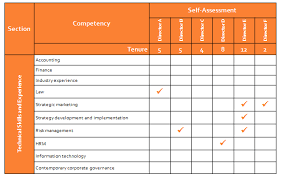 Skill Set Template Director Skills Competency Assessment Effective Governance