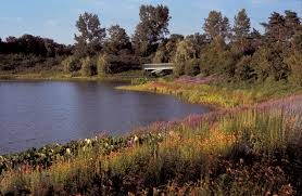 the chicago botanic garden s lake enhancement program continues to improve water quality heal eroded slines