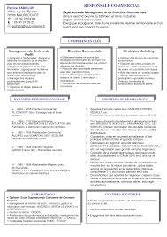 modele cv directeur commercial lettre de motivation  category 2017