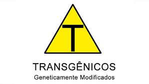 Resultado de imagen para alimentos transgenicos