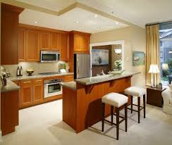 Idea For Small Kitchen Kitchen L Shaped Small Kitchen Design With Woden Cabinet Small