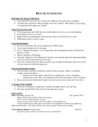 The Elegant Additional Skills Resume Examples Resume Format Web
