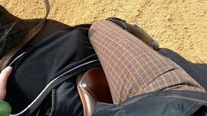 My Favorite Color Is Plaid Smartpak Piper Plaid Full Seat