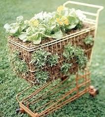 Creative Of Patio Vegetable Garden Containers Container Gardening Container Garden Ideas Vegetables
