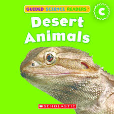 Desert Animals By Lydia Carlin Scholastic