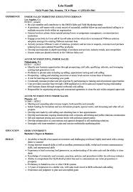B2b Sales Resumes Sales Executive Inside Sales Resume Samples Velvet Jobs B2b Sales