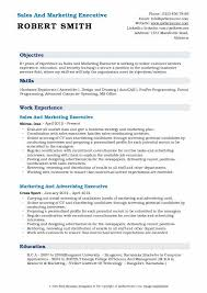 Objective For Resume In Sales Sales And Marketing Executive Resume Samples Qwikresume