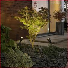 12 volt transformers outdoor lighting searching for low voltage outdoor lighting