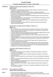 It Consultant Resume Sample It Consultant Resume Sample Resume Sample