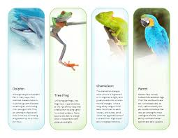 Bookmarks Tropical Animals Template Microsoft Publisher