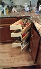 Blind Corner Cabinet Pull Out Shelves Blind Corner Cabinet Pull Out Shelf Home Design Ideas 55