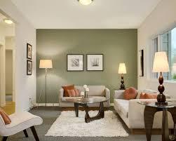 Fantastic Contemporary Living Room Designs  Green Living Room Contemporary Living Room Colors