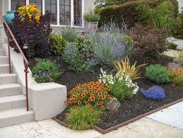 Small Picture Drought Tolerant Front Yard Landscaping maintenance drought