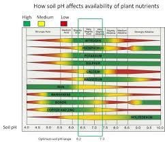 Soil Ph Nutrient Availability Soil Ph Ph Chart Calcium