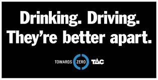 bloody idiots tac transport accident commission the vet drinking driving