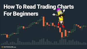 How To Read Stock Market Charts How To Read Trading Charts For Beginners Steemit