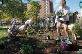Site Selected For The 2017 Wef Community Service Project