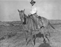 Long Ago.... | American paint horse, Horse painting, American paint