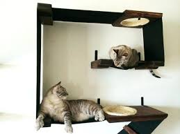 cat safe furniture. Cat Furniture For Small Space Wall Mounted Gives Cats A Safe Place To Run When W