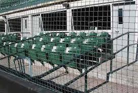 Nlfan Com Edmonton Cracker Cats Tickets Seating