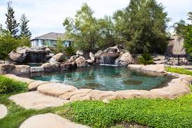 natural looking in ground pools. Wonderful Looking Remarkable Natural Looking In Ground Pools For Other Swimming Pool Designs On I