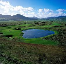 golf course in ireland wall mural small