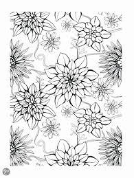 Moeilijke Kleurplaten Fris Bloemen Kleurplaat Volwassenen Archidev