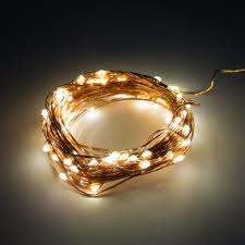 Alderbrook Lights Led Fairy Lights 6 Foot Battery Operated Waterproof With 20 Micro Led Lights