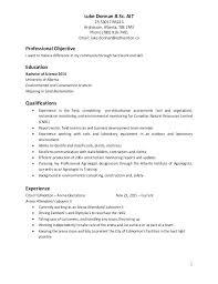 Resume For Team Leader In Bpo Sample Resume Team Leader Sample Resume With Salary