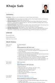 Sr. Seo Analyst Resume samples