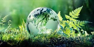 Экология и природопользование