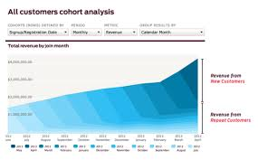 How To Make A Cohort Chart In Excel Increase Repeat Purchases With Cohort Analysis Cxl