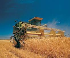 Реферат Экологические последствия интенсификации сельского  Реферат Экологические последствия интенсификации сельского хозяйства