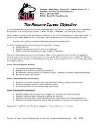 It Resume Objectives Samples Alieninsidernet