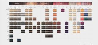 Redken Double Fusion Color Chart 54 Brilliant Redken Fusion Hair Color Womens Hairstyles