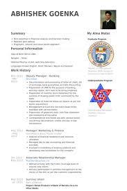 Deputy Manager Resume Samples Visualcv Resume Samples Database